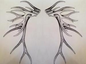 Original sketch and photo